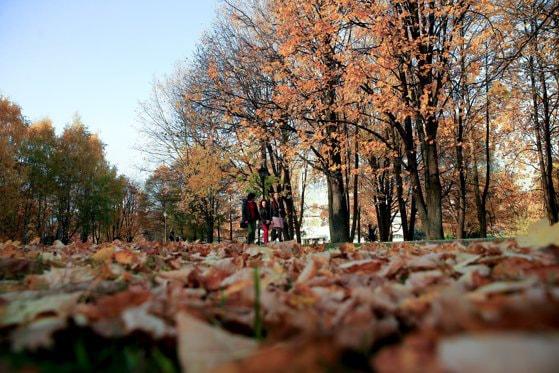 Cum va fi vremea în următoarele patru săptămâni. Vine frigul în România?
