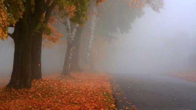 METEO, 27 noiembrie. Vremea în România: Ceaţă şi vizibilitate redusă în 35 judeţe, vineri dimineaţa