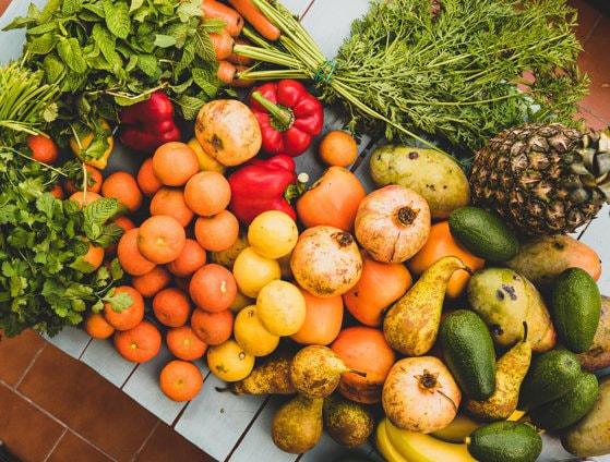 Noaptea Cercetătorilor la Muzeul Antipa: Cum să extragi ADN din fructe