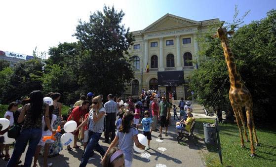 Noaptea Muzeelor la Antipa se va desfăşura anul acesta online