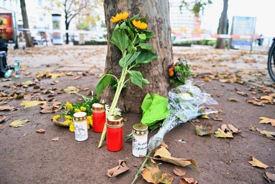 Viena este şocată în urma atacului terorist. Mesajul lui Isabel Rauscher, ambasadorul Austriei în România