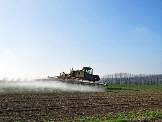 Preţul mic al terenului agricol din România atrage apetitul investitorilor străini